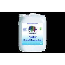 Sylitol Grund-Konzentrat 10 л